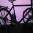 Pedelec auf der E-Bike-Messe klein